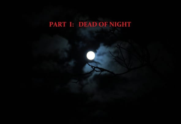 Chapter 1-1: Demon Night