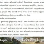 The Leeches Loom, Chapter 10 – Aoife